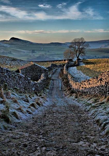 Winter Landscape by dcash29