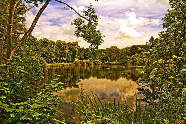 Clowance Estate, Cornwall by renoops