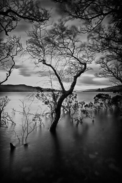floods by owenclarke