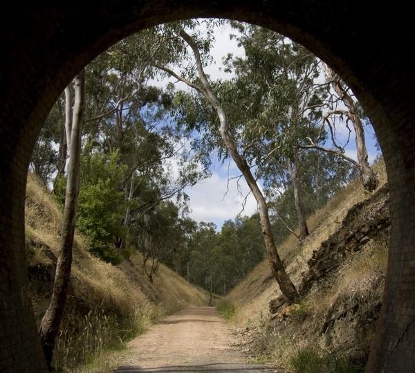 Cheviot Tunnel near Yea, Victoria, Australia by Elfix6