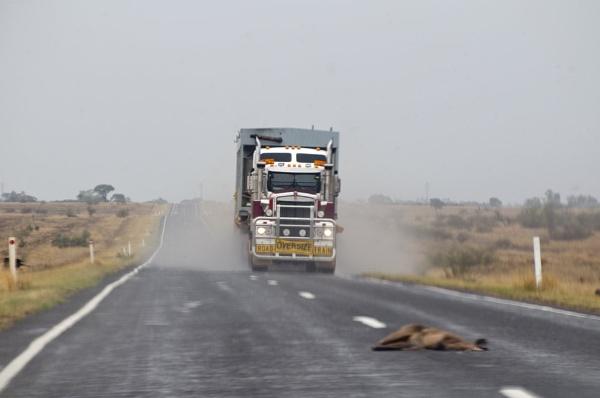 AUSTRLIAS HOT ROAD TRUCKERS by davie