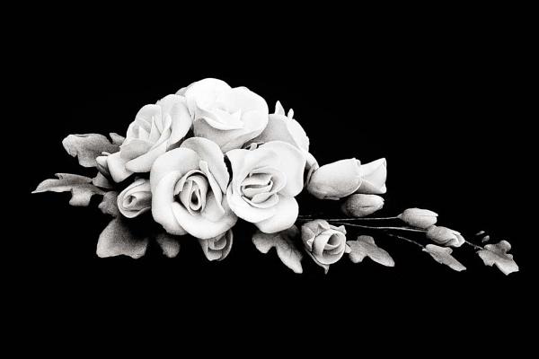 Sugar Rose by HuntedDragon