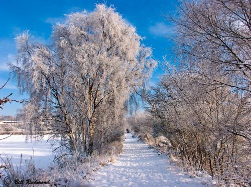 Snowy Old Pit Line - Landscape by richmowil