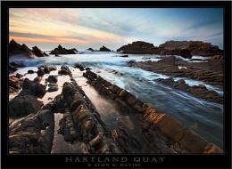 Hartland Gold