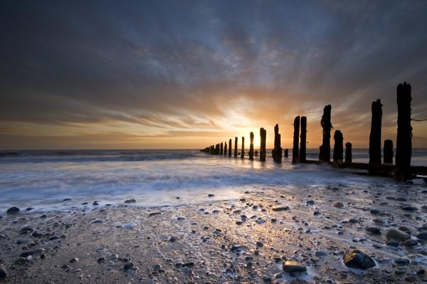 Ocean Sentinels by andychatt
