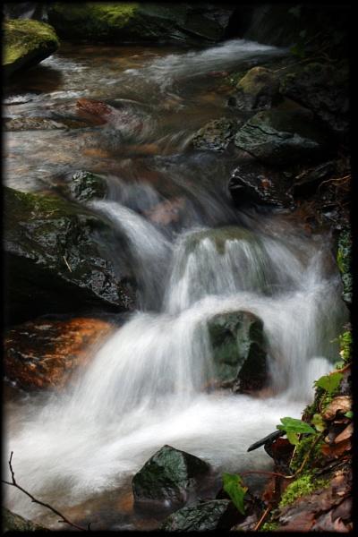 Milky Brook
