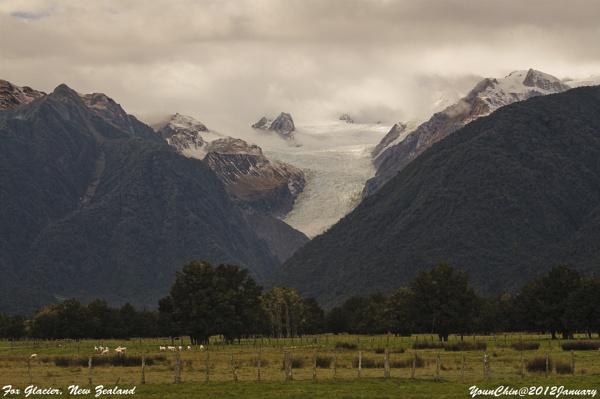 Fox Glacier NZ by Ycmah