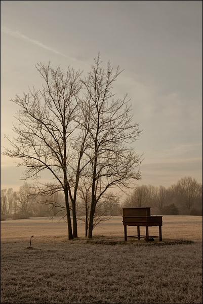 The Piano by FrancescoErcolano