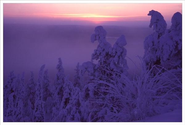 Frozen Dawn by rontear