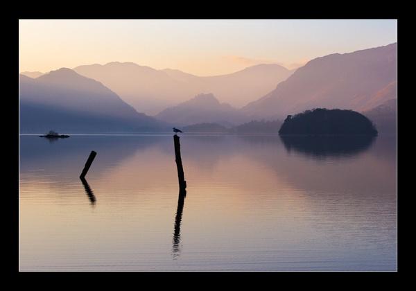 Lakeland Posts II by jeanie