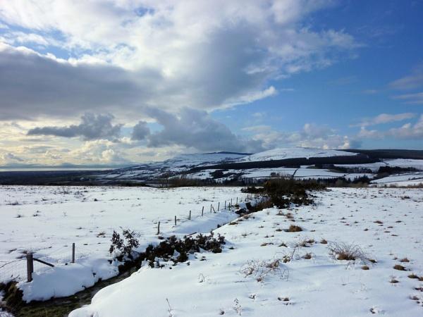 Snow by OceanOak