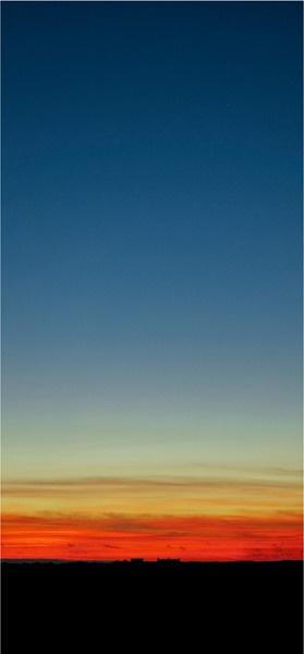 Lizard Sunset by StickyW
