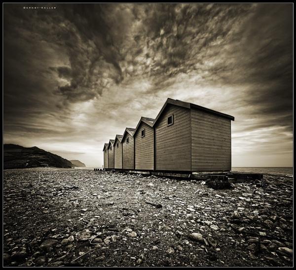 08155 - Charmouth Coast by Gernot