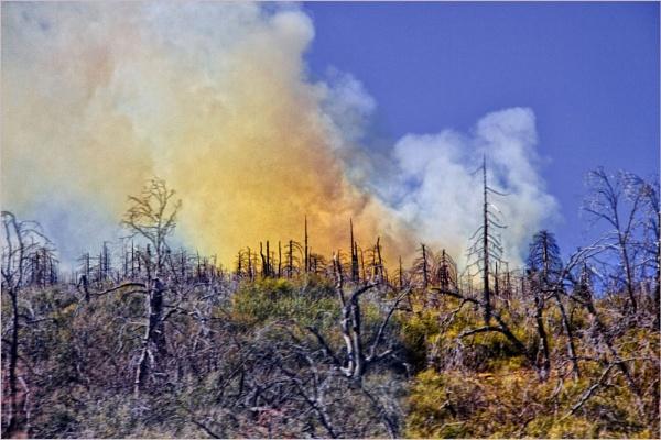 Hill Fire by Daisymaye