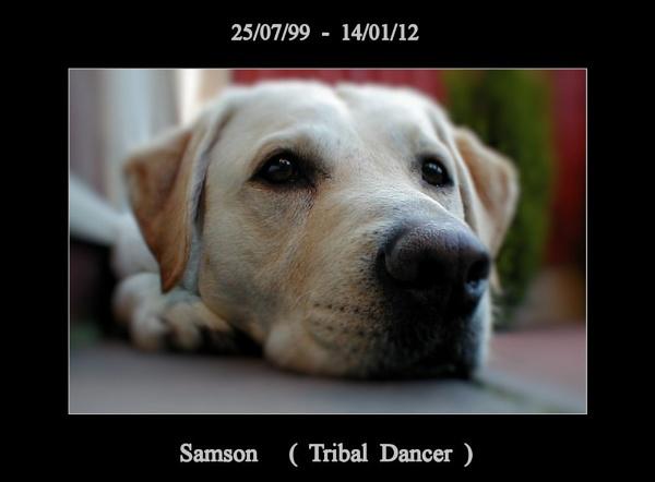 Samson  ( Tribal Dancer ) by KEV67S