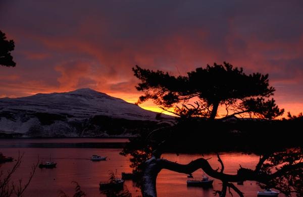 Dawn by Sasanach