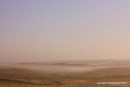 Moors Fog