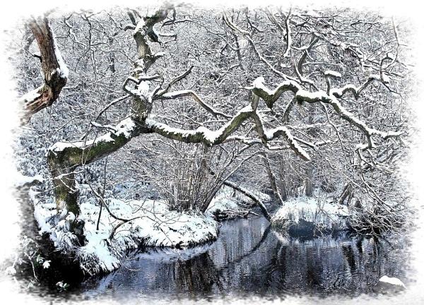 Winter Stream by nazimundo
