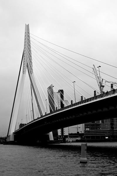 erasmus bridge by freeyouremind2012