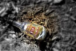 Wasted II  (DA)