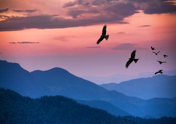 Daybreak by SueEley