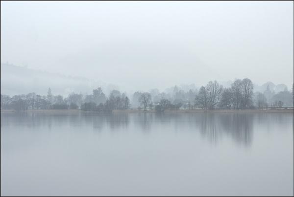 Misty by dwilkin