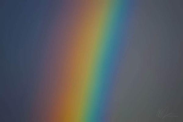 Rainbow by WarrenD
