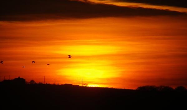 Sunset Glow by sazzykins