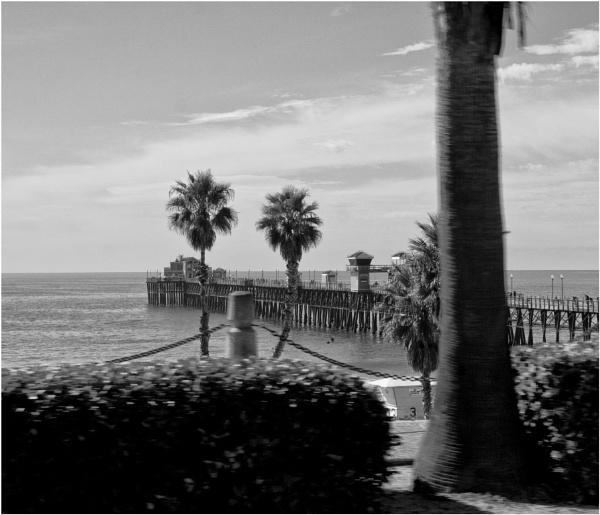 Oceanside Pier by Daisymaye