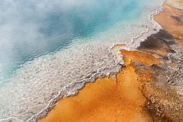 Algae on a Yellowstone pond by DixClix