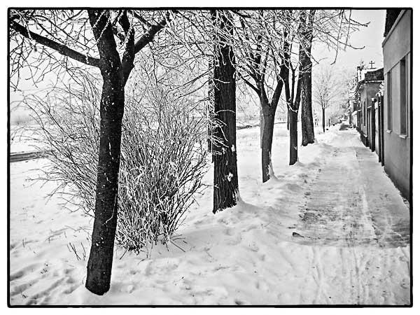 On the street in winter by Laslo