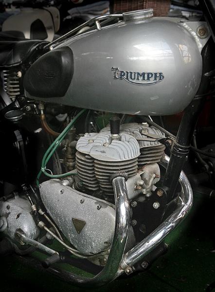 Triumph by f8
