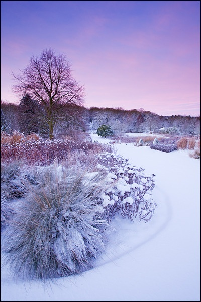 Winter Wonderland by lee beel