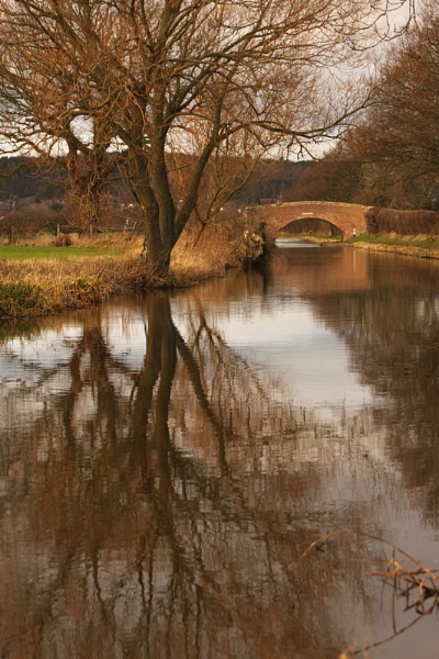 reflection by bertie1983