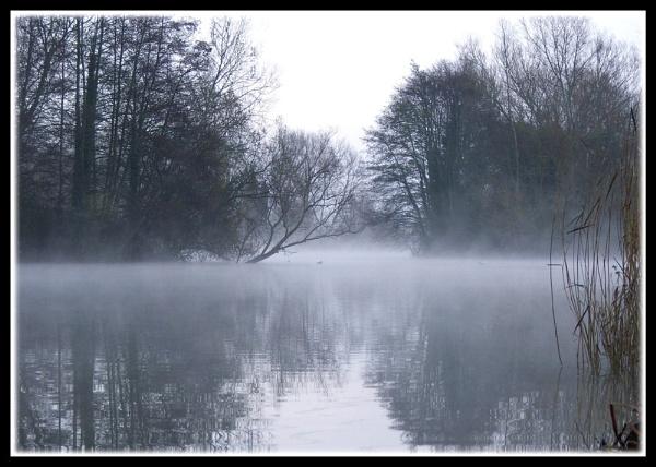 Misty Broadlands Romsey Hants by mikearicha
