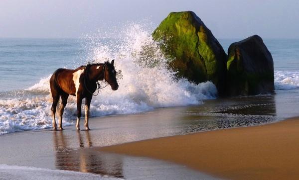 Sea Water Massage by bglimaye