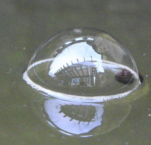 reflexion in bubble by christinecilia