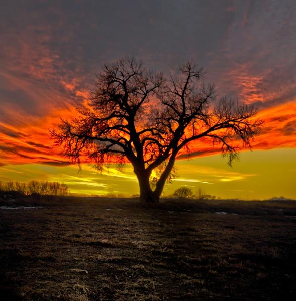 Fiery Sky by enricopardo