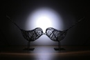 Two Little Lovebirds... by Umberto_V