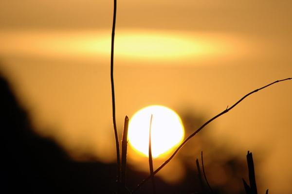 sun by amazin