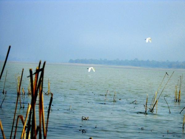 lake by purna