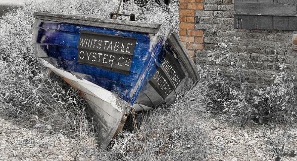 derelict boat by throgmorton