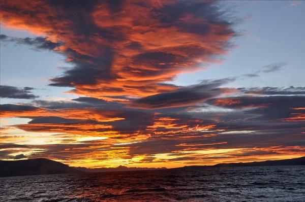 Dawn by dasher