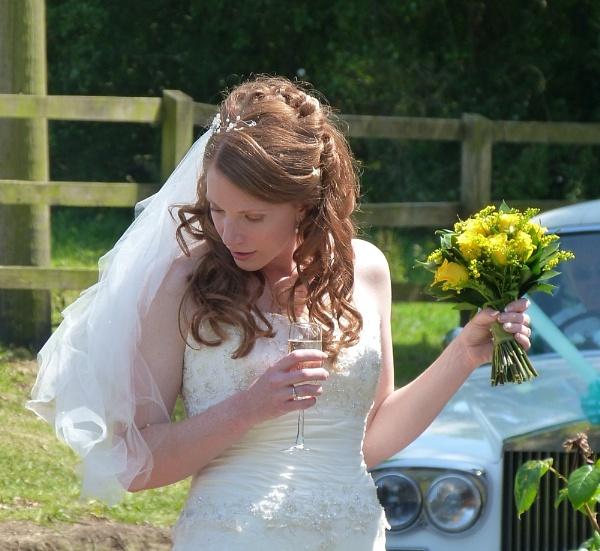 Katy\'s Wedding by Sam41
