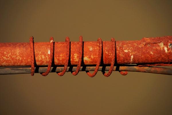 A rusty curl... by Chinga