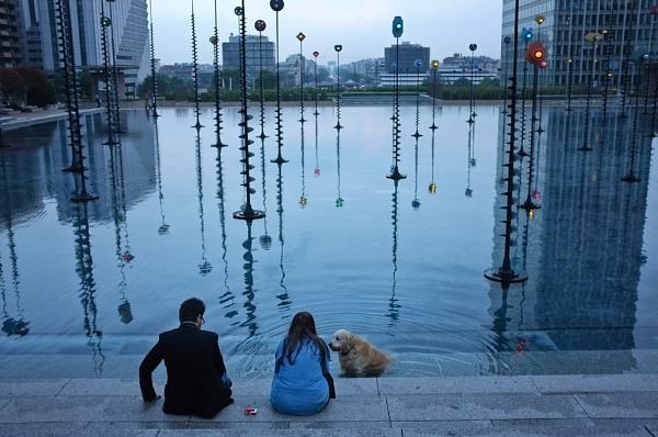 Man, Woman, Dog by Dubhthaigh