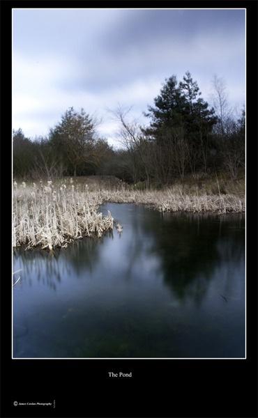 The Pond by JCowlan