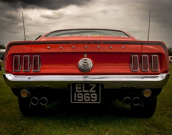 Mustang by davidburleson