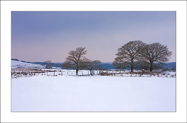 Snowy scene by skye1