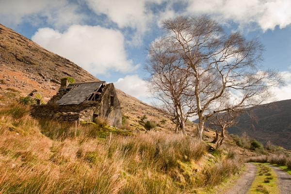 Derelict Farm House in the Black Valley by Paul1